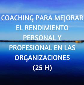 curso, online, teleformacion coaching