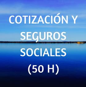 curso, online, teleformacion, cotización