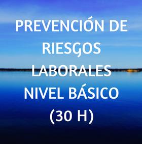 cursos, online, prevención, laboral