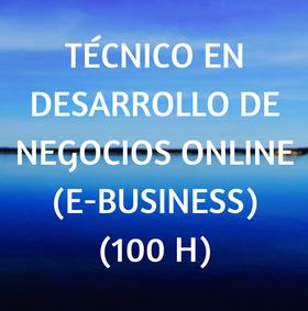 curso, online, negocios, técnico