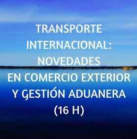 curso, online, transporte, aduanera