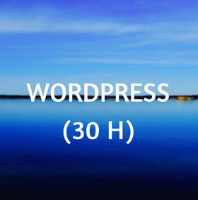 curso, online, wordpress,